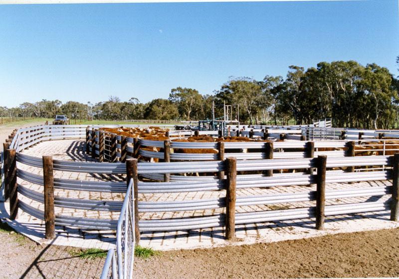 Presto Cattle Yards